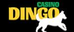 casino-dingo